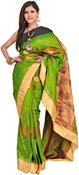 Peridot-Green Sari from Bangalore with Woven Paisleys and Temple Border