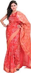 Geranium Bandhani Tie-Dye Marwari Sari from Jodhpur with Woven Aanchal