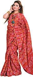 Chili-Pepper Bandhani Tie-Dye Gharchola Sari from Gujarat