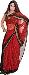 Maroon and Black Bandhani Tie-Dye Sari from Gujarat with Woven Border