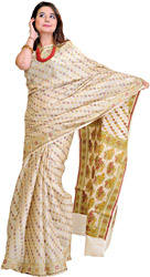 Cloud-Cream Sari from Banaras with Woven Bootis All-Over