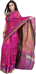 Vivid-Viola Sari from Bangalore with Woven Leaves in Zari Thread