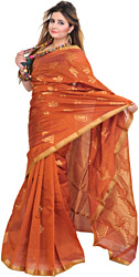 Copper-Brown Banarasi Sari with Hand-Woven Leaves and Zari Weave on Aanchal