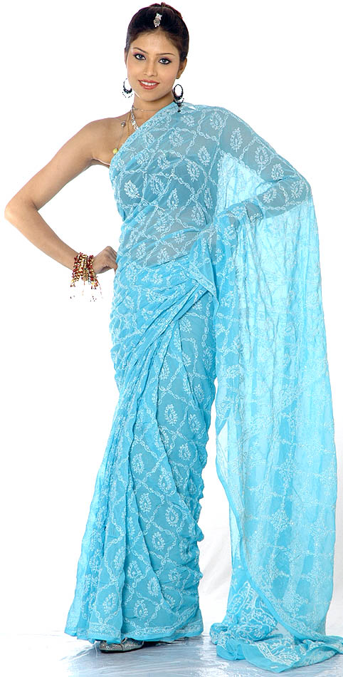 Image credit: http://www.exoticindiaart.com/saris/skyblue_lukhnavi_chikan_sari_with_jaal_embroidery_cl88.jpg