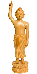 Gautam Buddha (With Lotus Springing Under His Feet at Time of His Birth)