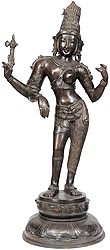 Shiva as Ardhanarishvara