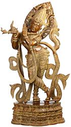 Venu Gopal: The Enrapt Player of Flute