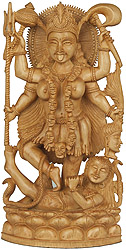 A Narrative Sculpture of Goddess Kali