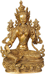 Green Tara - The Goddess Who Removes All Fears