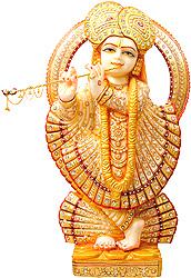 Bhagawan Krishna