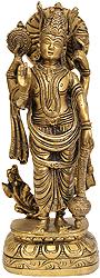 Bhagawan Vishnu
