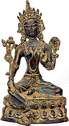 Saviour Goddess Green Tara