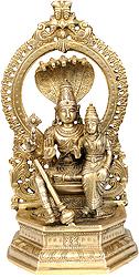 Bhagwan Vishnu with Lakshmi Ji