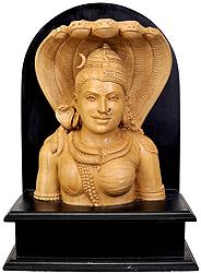 Ardhanarishvara Bust (Shiva-Shakti)