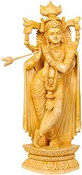 Bhagawan Shri Krishna