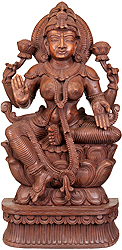 Goddess Lakshmi