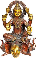 Goddess Lakshmi Seated on Three Elephant Head