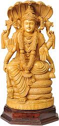 Lord Vishnu Ji