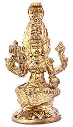 South Indian Goddess Durga