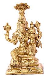 Bhagawan Hayagriva with His Shakti
