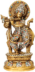 Lord Krishna in Ornamented Costume