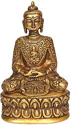 Dhyani Buddha with Beautiful Decorated Robe