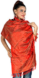 Tehra Banarasi Stole Hand-Woven with All-Over Paisleys