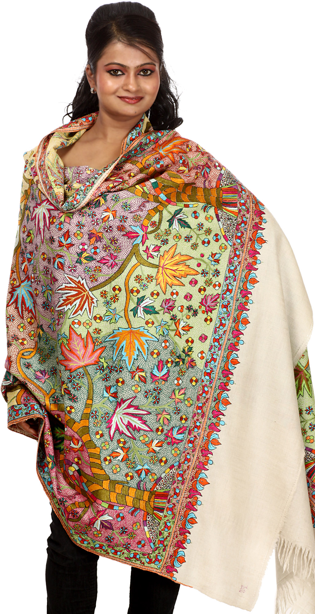 multi color superlative pashmina shawl from kashmir with