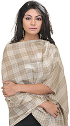 Off-White Pashmina Stole with Woven Checks