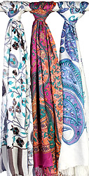 Lot of Three Stoles with Multi-Color Kani Print