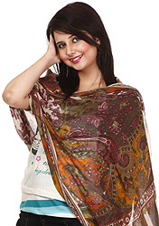 Multi-Color Stole with Antique Akbari Print and Ivory Core
