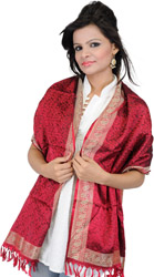 Banarasi Stole with All-Over Tanchoi Weave and Paisley Border