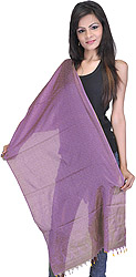 Banarasi Handloom Scarf with All-Over Tanchoi Weave