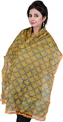 Muskmelon Stole with Kantha Stitched Embroidered Motifs