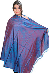 Banarasi Handloom Shawl with Tanchoi Weave All-Over