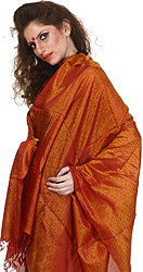 Cordovan Banarasi Shawl with Tanchoi Weave All-Over