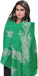 Kashmiri Stole with Ari Embroidered Paisleys by Hand