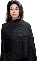 Ari Embroidered Stole with Sequins and Beads