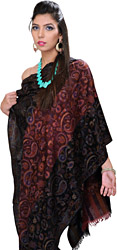 Oxblood-Red and Black Double-Shaded Pashmina Stole with Multi-Color Kani Weave