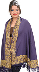 Plain Designer Arc Shawl from Amritsar with Embroidered Paisleys and Crystals on Border