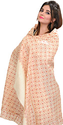 Winter-White Kashmiri Tusha Shawl with Needle Embroidery All-Over