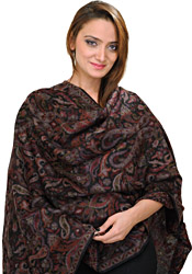 Black Cashmere Kani Stole with Woven Paisleys in Multi-Colored Thread