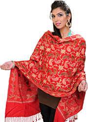 Stole from Amritsar with Ari Embroidered Paisleys All-Over