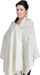 Vanilla-Ice Phulkari Stole with Ari Embroidery in Silver Thread and Sequins