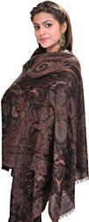 Pine-Bark Reversible Pashmina Jamawar Stole with Woven Paisleys