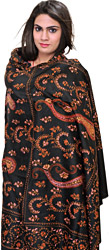 Caviar-Black Kashmiri Tusha Shawl with Needle-Embroidered Paisleys by Hand