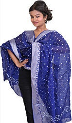 Bandhani Tie-Dye Dupatta from Gujarat with Woven Border