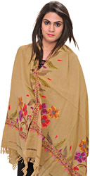 Stole from Amritsar with Ari Hand-Embroidery on Border