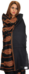 Jet-Black Tusha Shawl from Kashmir with Sozni Hand-Embroidered Paisleys All-Over