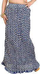 Moonlight-Blue Crushed Elastic Skirt with Printed Flowers and Gota Border